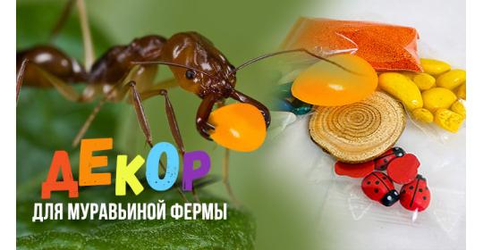 Набор декора в подарок: добавь красоты и эстетики в маленький мир муравьев