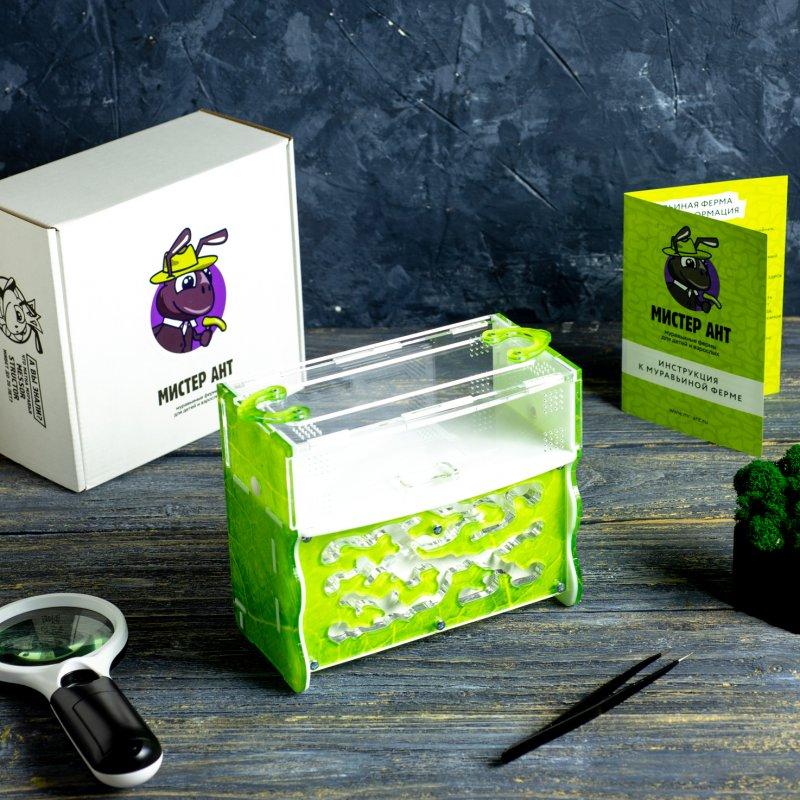"""Комплект муравьиной фермы с муравьями Level """"Зеленый лист"""""""