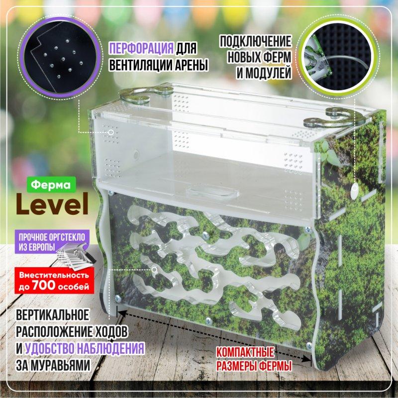 """Комплект муравьиной фермы с муравьями Level """"Горный мох"""""""